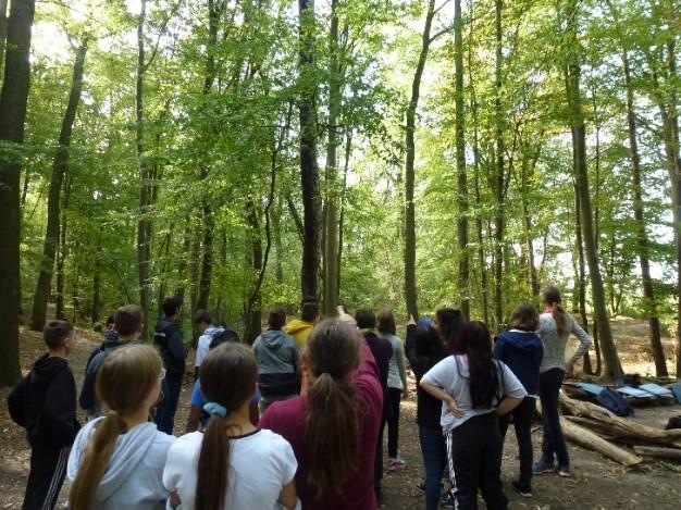 Waldausflug in den Timmerlaher Busch