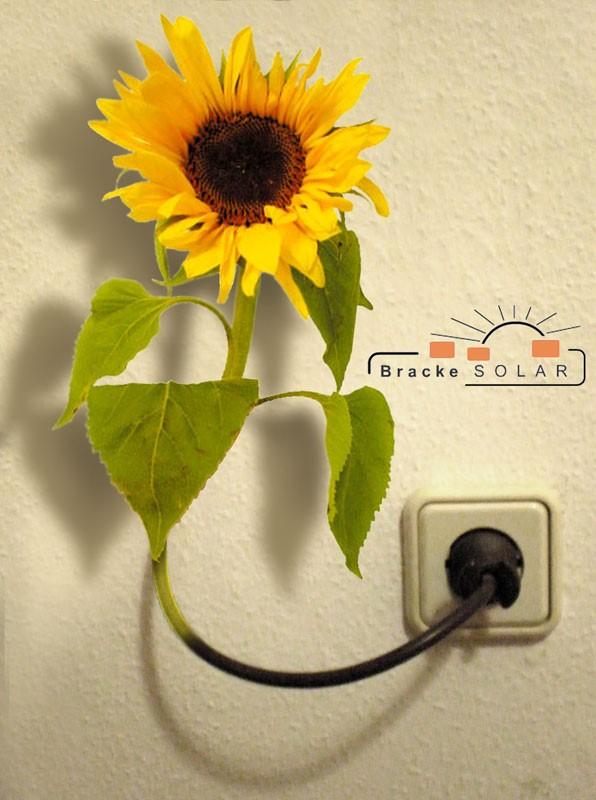 Logo: Bracke Solar